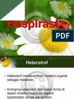 2. Respirasi heterotrof