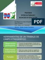 Procesos Interculturales y Bilingües en Educación