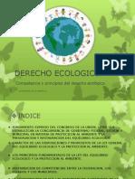 Derecho Ecologico Expo.