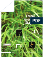 GRDC Cereal Growth Stages