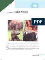 4. Penggolongan Hewan