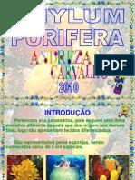 02-porferos-100325161936-phpapp01