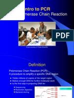 PCR_08