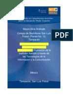 msilva_Estrategia didáctica (Autoguardado)