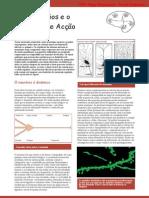 Neurociência_02NeuroniosEPotencialAccao