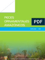 Catalogo de Peces Ornamental Amazonicos
