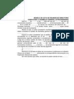 ACTA DE REUNIÓN DE DIRECTORIO-MODELO