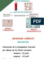 Anemia+Megaloblastica+2009+DraKornblihtt