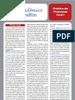 GuiaPraticaProcessoCivilI_Daniela.pdf