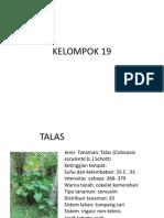 KELOMPOK 19