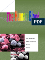 The Human Blood