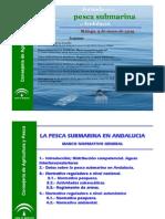 Pesca Submarina en Andalucxa Marco Normativo General