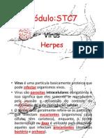 Microsoft PowerPoint - Virus - Herpes