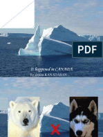Urso Polar x Huskies