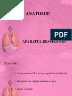 Anatomia Aparatului Respirator