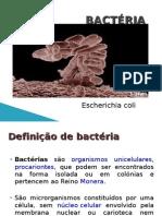 E.coli Power Point
