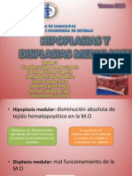 Hipoplasias y Displasias Medulares