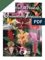 Plantas Ornamentales Tropicales