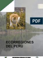 Ecorregiones Del Peru Biodiversidad