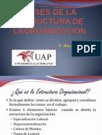 11 BASES DE LA ESTRUCTURA DE LAORGANIZACIÓN.pptx