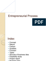 entrepreneural process