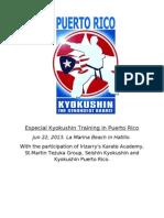 Especial Kyokushin Training in Puerto Rico