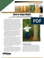 Hardwood Lumber and Venner Series - Hard or Sugar Maple