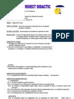 Proiect Didactic - Organele de Simt