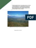 Proyeto Inicial Sistemas Silvopastoriles CIPAV.doc