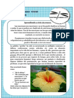 29.-Boletin Semal Liber 16 de Feb 09 Aprendiendo a Vivir Sin Rencor