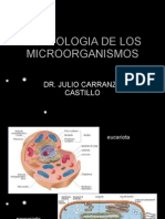 Morfologia de Los Microorganismos