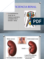 Expo Insuficiencia Renal