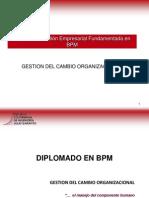 BPMGestiondelCambioOrganizacional