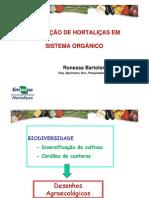 Produção-de-hortaliças-orgânicas