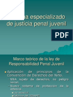 teoría ley penal juvenil