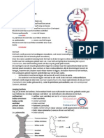 Embryologie Samenvatting HC 6-8