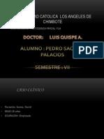 Pedro Sacaico Ppf Exposicion