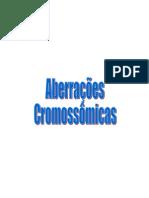 Aberrações cromossômicas