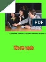 Redacción, Ortografía y Comprensión de Lectura Sesión 2 Primera parte (Paúl Llaque 2013)
