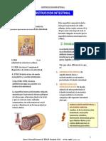 Obstruccion Intestinal - PLUS Medica