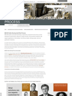 Sulfur Burning Processes and Acid Plant D