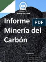 informe final del carbón
