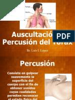 17212068 Auscultacion y Percusion Del Torax