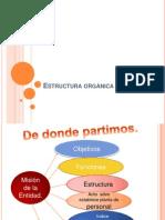 Estructura orgánica del evento