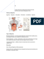 Physiology of Digestion