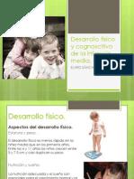 t15desarrollofsicoycognoscitivodelainfanciamedia-121017212823-phpapp02