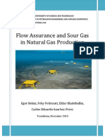 Flow Assurance and Sour Gas