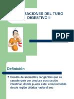Alteraciones Del Tubo Digestivo II Final