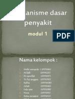 ppt fika