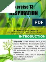 Respiration Bio21